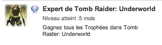 Platine Tomb Raider Underworld